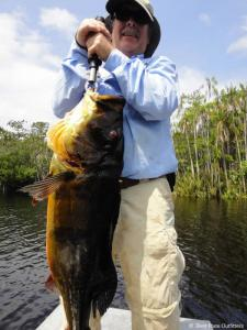 brazil-amazon-peacock-bass-fishing-gallery-16